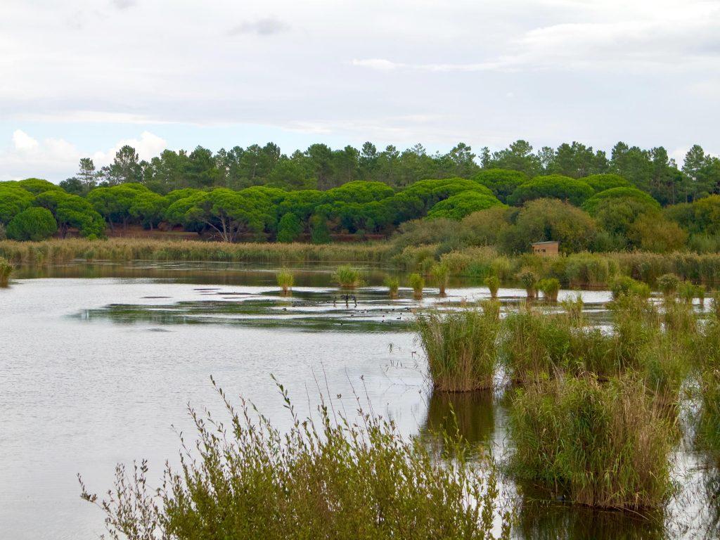 Lago Pequena de Albufeira